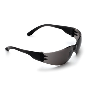 P1620 - Tsunami Safety Specs - Smoke